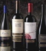 Concha Y Toro Wines