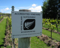 Sustainable Vineyard at Carrick Wines