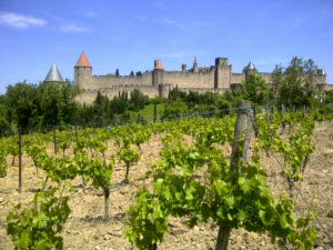 Vineyards outside the walls of Carcassonne