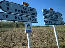The road to Beaujolais