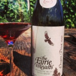 The Eyrie Vineyards Estate Pinot Noir 2010