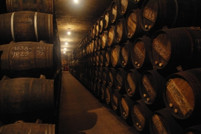 Inside the cellars of Lopez de Heredia