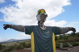 Always with us: Nelson Mandela still watches over vines at Fairview Cellars