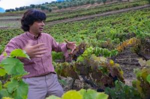 Alvaro Martinho Dias Lopes extolls the virtues of old field blends, Quinta das Carvalhas-3420