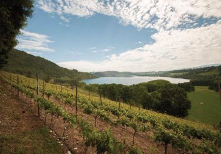 Casa Silva - Largo Ranco Sauvignon Blanc - Wines of Chile