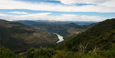 View over the Douro River
