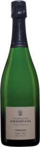 Champagne Agrapart Terroir Blanc De Blanc Grand Cru Champagne