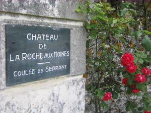 Chateau-de-La-Roche-aux-Moines---Coul-e-de-Serrant