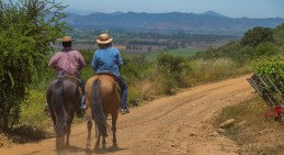 Horseback riding at Montgras, Colchagua-7132