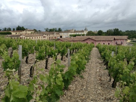 Château Lafite Rothschild vines and buildings