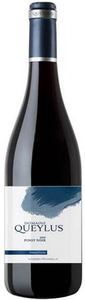 Domaine Queylus Pinot Noir 'tradition' 2010