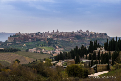 Tuscany and Barolo Tour with John Szabo