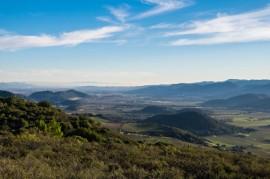 Napa Hills vs. the Valley Floor-8363