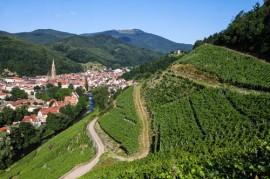 Rangen de Thann, Alsace