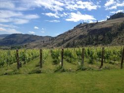 Golden Mile Bench - Culmina Winery