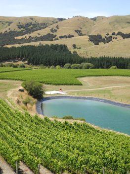 1 Wairarapa Craggy Range Te Muna Road Vineyard