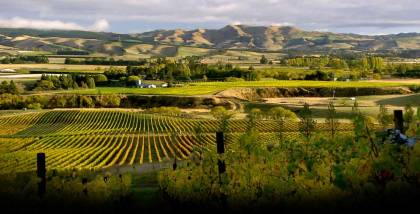 4 Waipara Valley