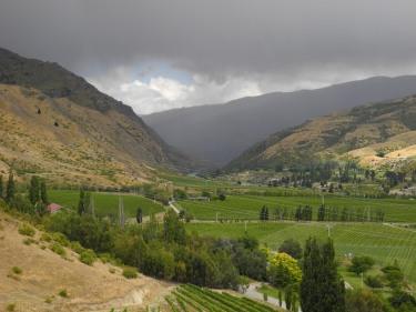 6 Otago Bannockburn