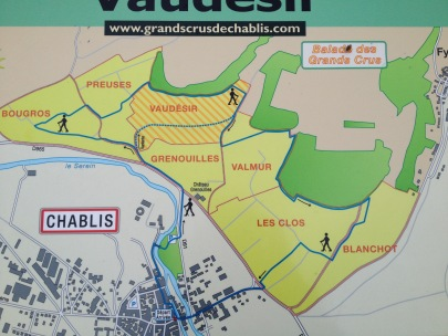 Walking map showing the proximity of the Grand Crus to town of Chablis