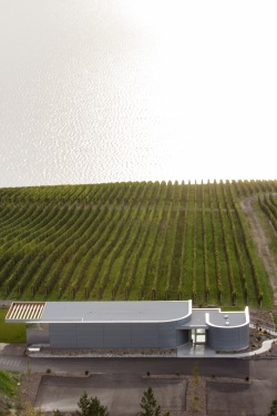 Arial of Tasting Room 2