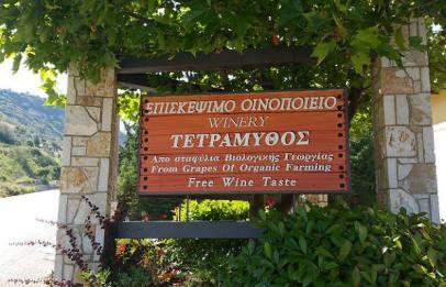 Tetramythos Winery, Ano Diakopto of Egialia