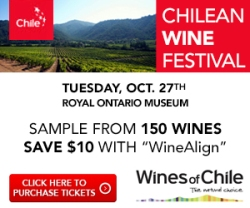 Chilean Wine Festival - Oct 27