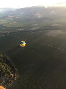 View of Napa Valley from above