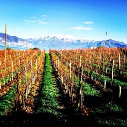 Bella Vista Chardonnay, Lago Iseo and the Dolomite Mountains