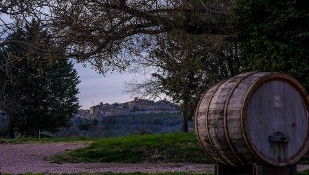 Montefalco from Poggio Turri-4412
