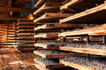 Traditional grape drying room at the Serego Alighieri Estate-9965