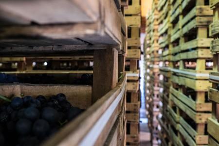 Ca' la Bionda's wooden crates for appassimento