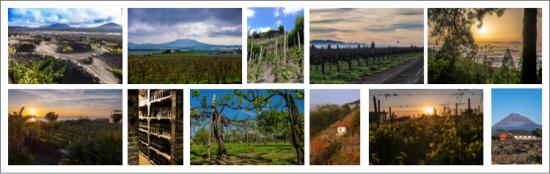 Volcanic Wine Photo Collage