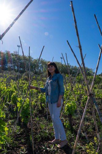 """Elena Fucci in her old """"vigne a capanno"""" vines-2123"""