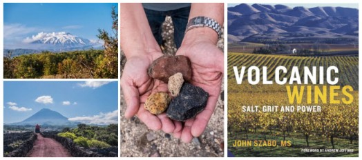 Volcanic Wines Taste & Buy Event & Book Signing – Nov 22nd