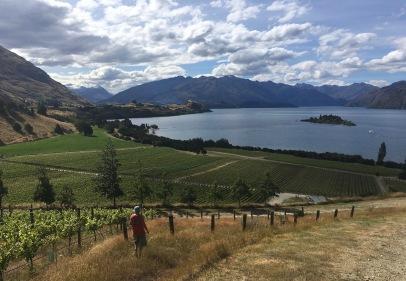 Nick Mills et le vignoble de Rippon, à Wanaka, dans Central Otago.
