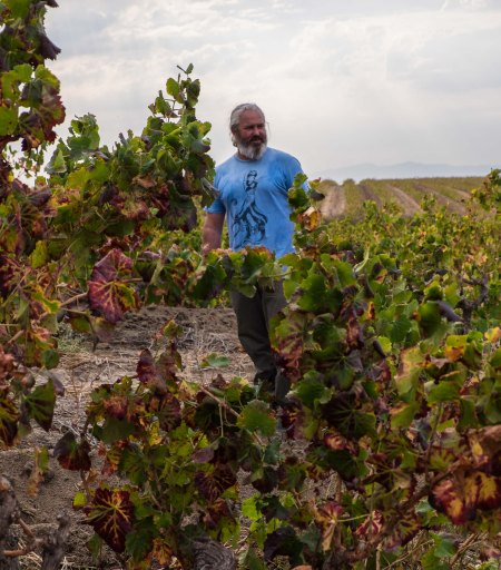 Adi Badenhorst in SA's oldest grenache vines, planted early 1950s-7756