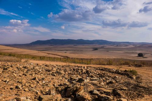 The wild west- barren Swartland in the drought of 2016