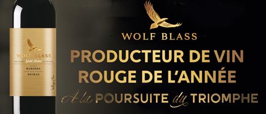Wolf Blass Gold Label Shiraz 2013