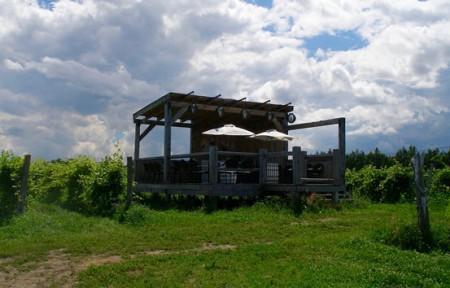 La terrasse multisensorielle au Vignoble de la Bauge, à Brigham