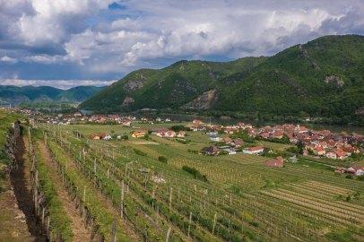 Looking East in the Danube Valley at Joching village