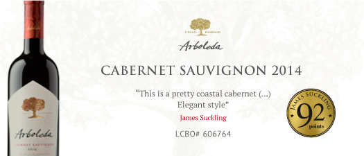 Arboleda Single Vineyard Cabernet Sauvignon 2014