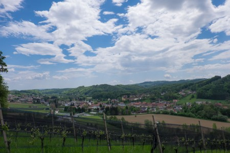 Hillside vineyards, valley roads and villages