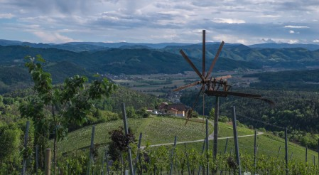 Sausal, Austria's highest elevation vineyards