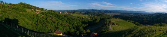Sausal Panorama