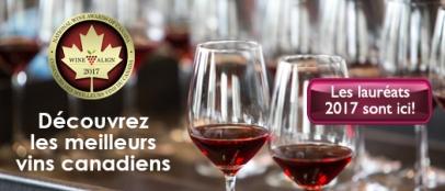 Découvrez les meilleurs vins canadiens