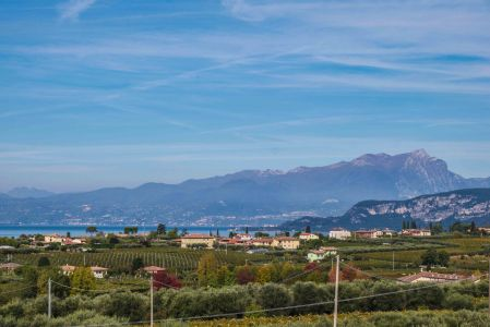 Bardolino- vineyards, olive groves, mountains and Lake Garda-9726