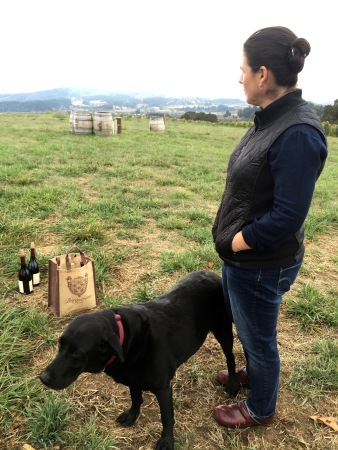 Karen Bergström preoccupied with pinot in Oregon's prestigious Dundee Hills AVA - 1
