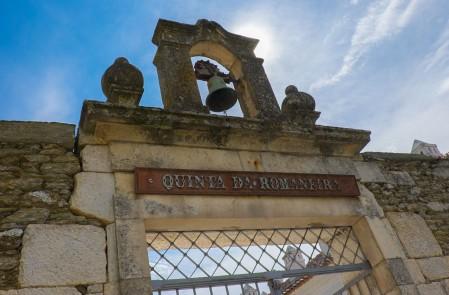 Quinta da Romaneira, Douro Valley-3248