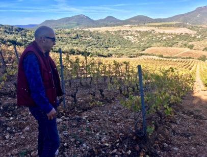 Sylvain Fadat en haut du magnifique vignoble de Les Cocalières, planté en 1998.