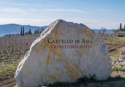 Castello di Ama, Vigneto di Bellavista-0020